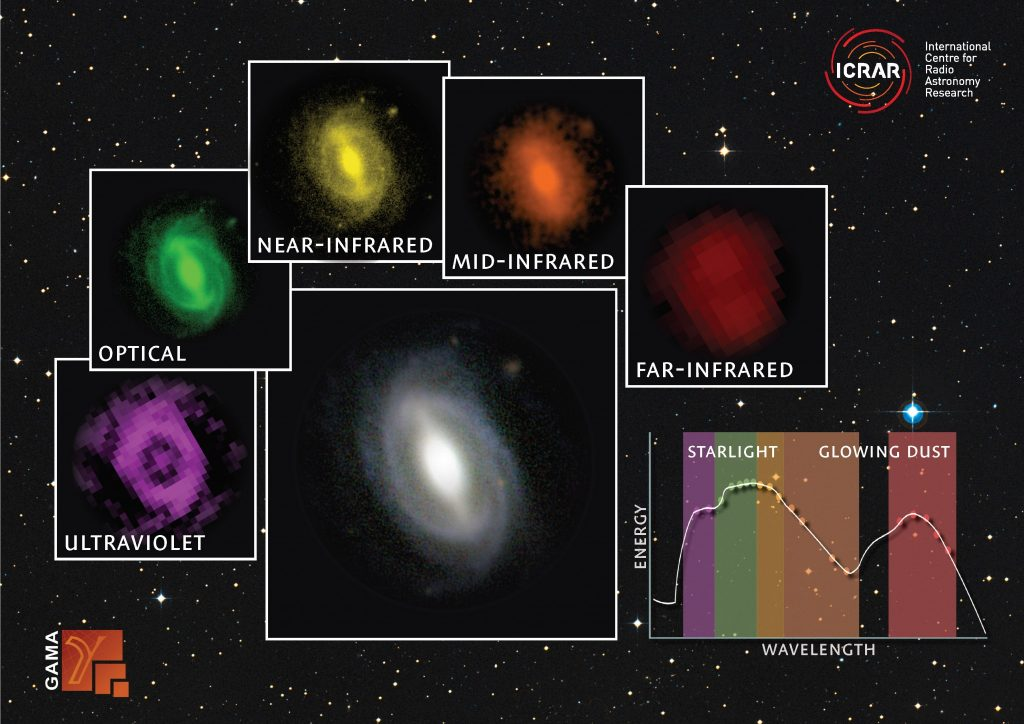 A galaxy from the GAMA survey observed at different wavelengths from the far ultraviolet to the far infrared. The inset graph shows how much energy is being generated at the different wavelengths. Credit: ICRAR / GAMA.