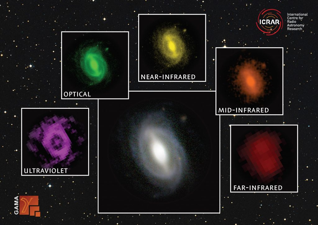 A galaxy from the GAMA survey observed at different wavelengths from the far ultraviolet to the far infrared. Credit: ICRAR / GAMA.