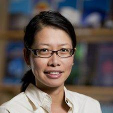 O. Ivy Wong
