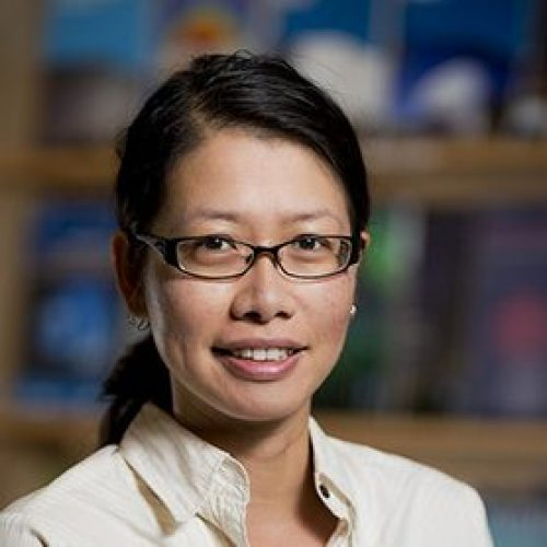 Dr Ivy Wong <br>SUPER SCIENCE FELLOW Image