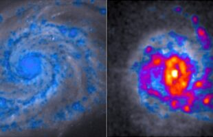 New spin on star-forming galaxies