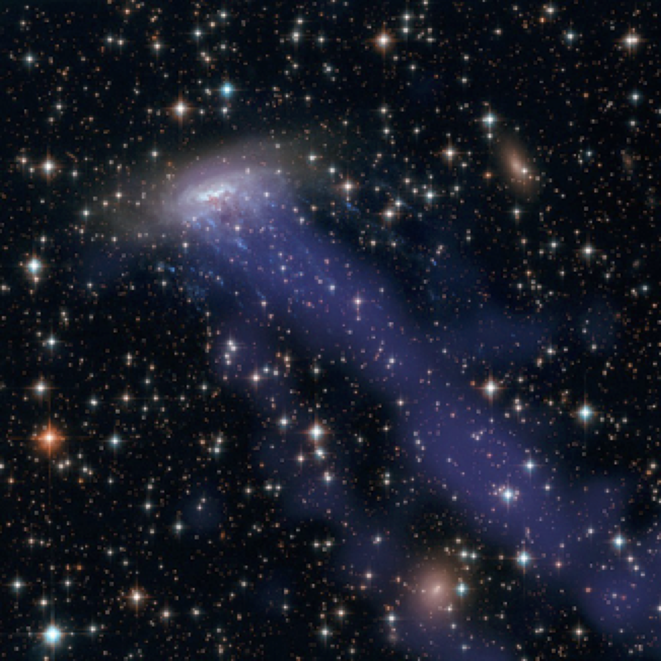Gas being stripped from a spiral galaxy as it plunges into a dense cluster