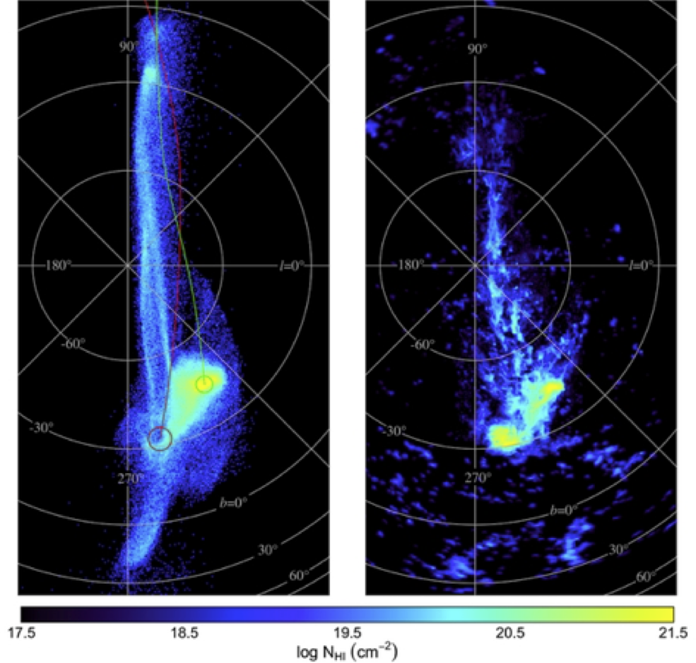Figure: The comparison between the simulated and observed Magellanic Stream (Diaz & Bekki 2012).