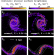 Environmental effects on galaxy evolution at multi-wavelengths