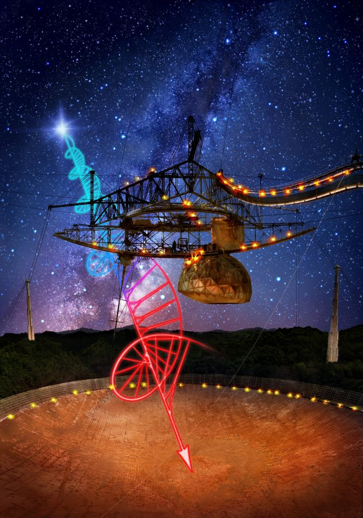 The 305-metre Arecibo telescope, in Puerto Rico, and its suspended support platform of radio receivers is shown amid a starry night. A flash from the Fast Radio Burst source FRB 121102 is seen, originating beyond the Milky Way from deep in extragalactic space. This radio burst is highly polarised, and the polarised signal gets twisted as a function of radio frequency because there is an extreme region of magnetised plasma between Earth and the source of the bursts. Credit: Image design - Danielle Futselaar; Photo - Brian P. Irwin / Dennis van de Water / Shutterstock.com