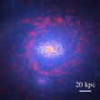 Galaxy formation in state-of-the-art cosmological hydrodynamical simulations