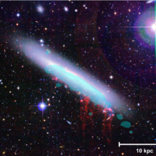 First Canadian-led ALMA Survey to Investigate the Impact of Galaxy Environment on Star Formation Image