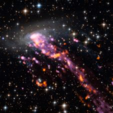 ALMA explores a Cosmic Jellyfish Image